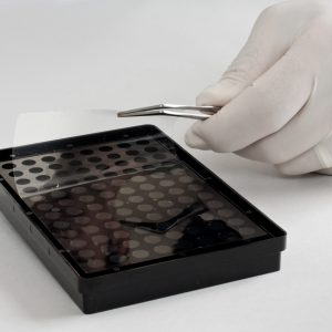 Acktar 3D Transparent Bottom Cell Culture Coated Microplates