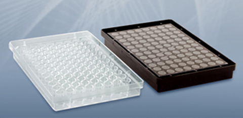 from the right: clear 96 well plate. from the left: black coated 96 well plate.